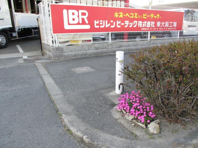 IMG_6182